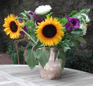 sunflower Avignon
